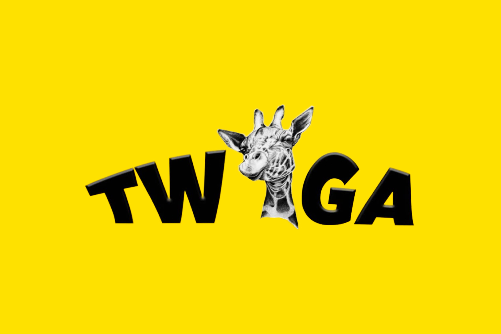"""""""Twiga"""" - the swahili word for Giraffe is a premium Maize Meal product that is known for its distinguished quality, going from its high-end packaging all the way to the perfectly milled maize meal with a balanced granulation for a very 'long-lasting' Bukari. Available in 25kg and the handy 'meka' packaging."""