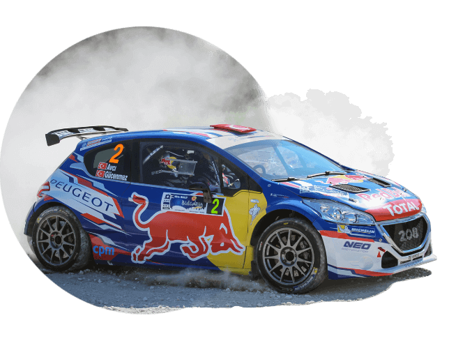 Peugeot 207 rally car