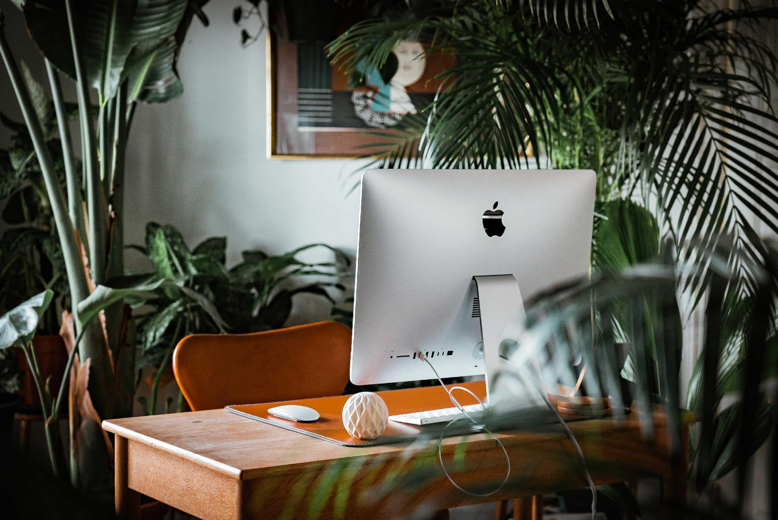 Halflight est un studio digital à échelle humaine qui vous accompagne dans la réalisation de vos projets digitaux et sites internet à Lille, Valenciennes et partout ailleurs.