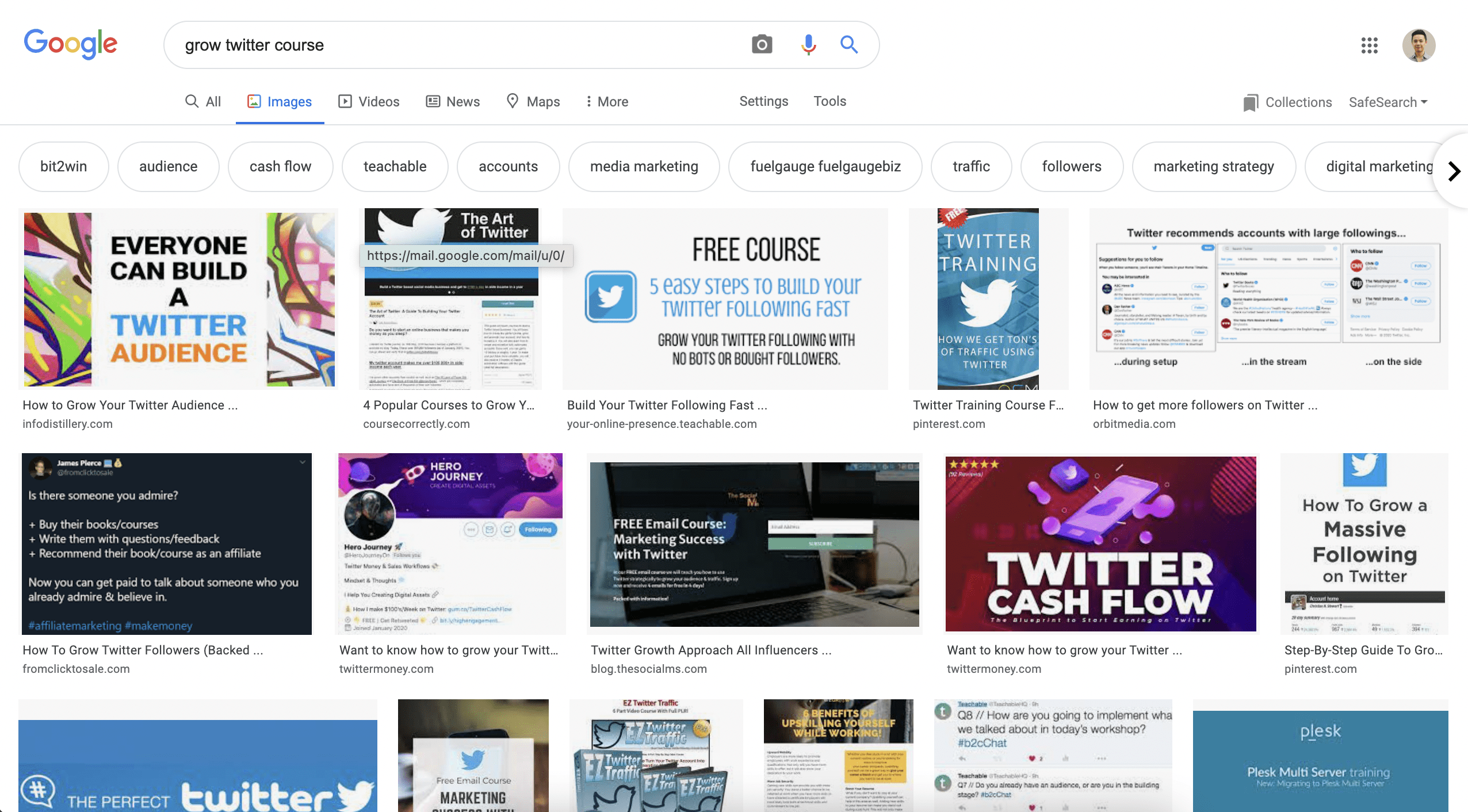 Google Search Result on Growing Twitter Courses