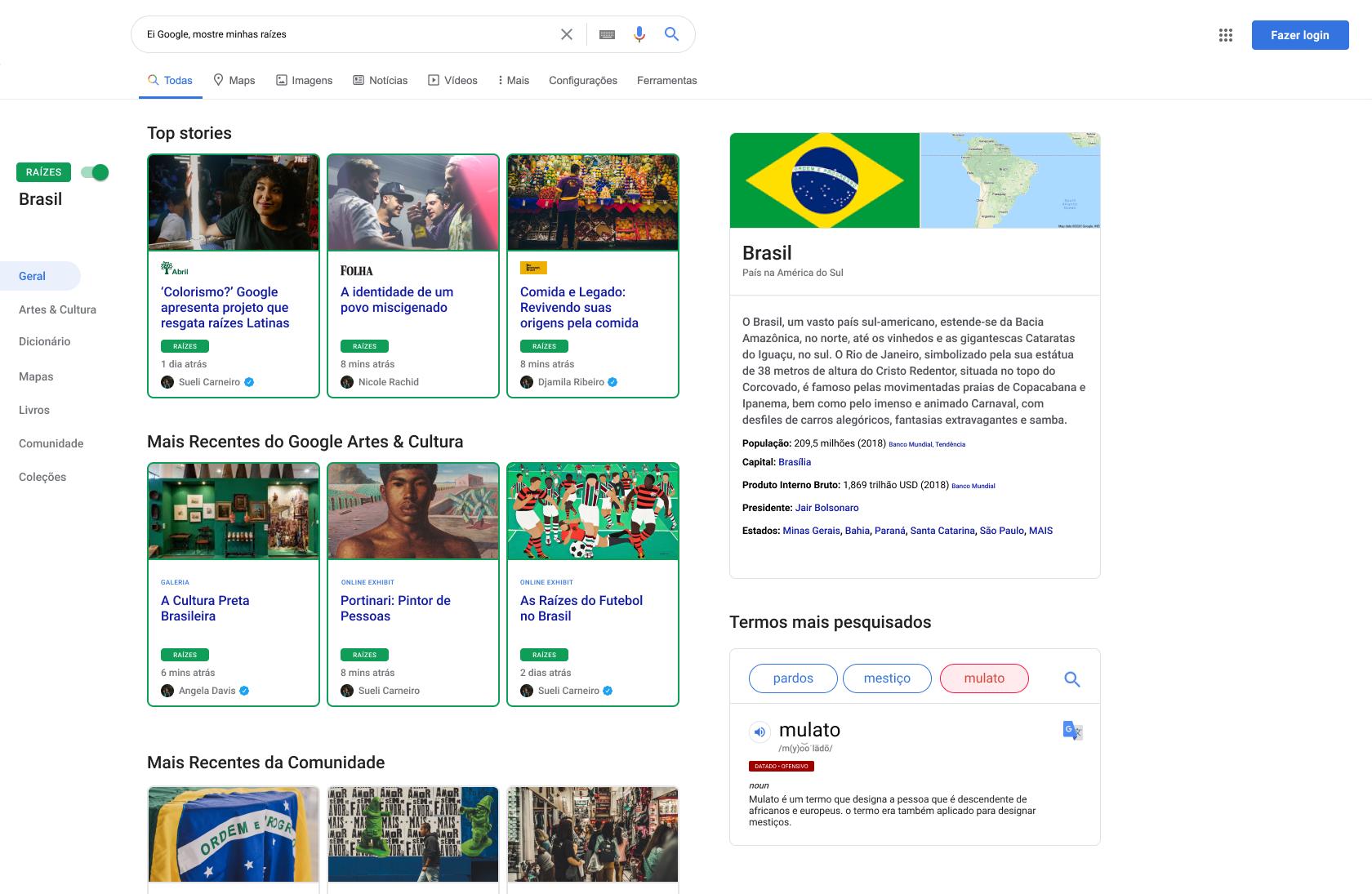 Mockup of Brazil Raizes page