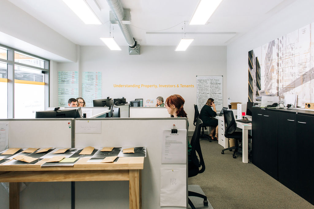 Welcome to the Comprendé Office in Wellington