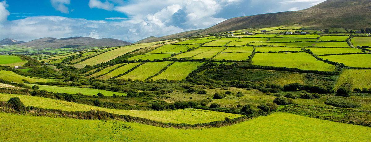Green Glens