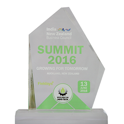 New Zealand Business Council Momento