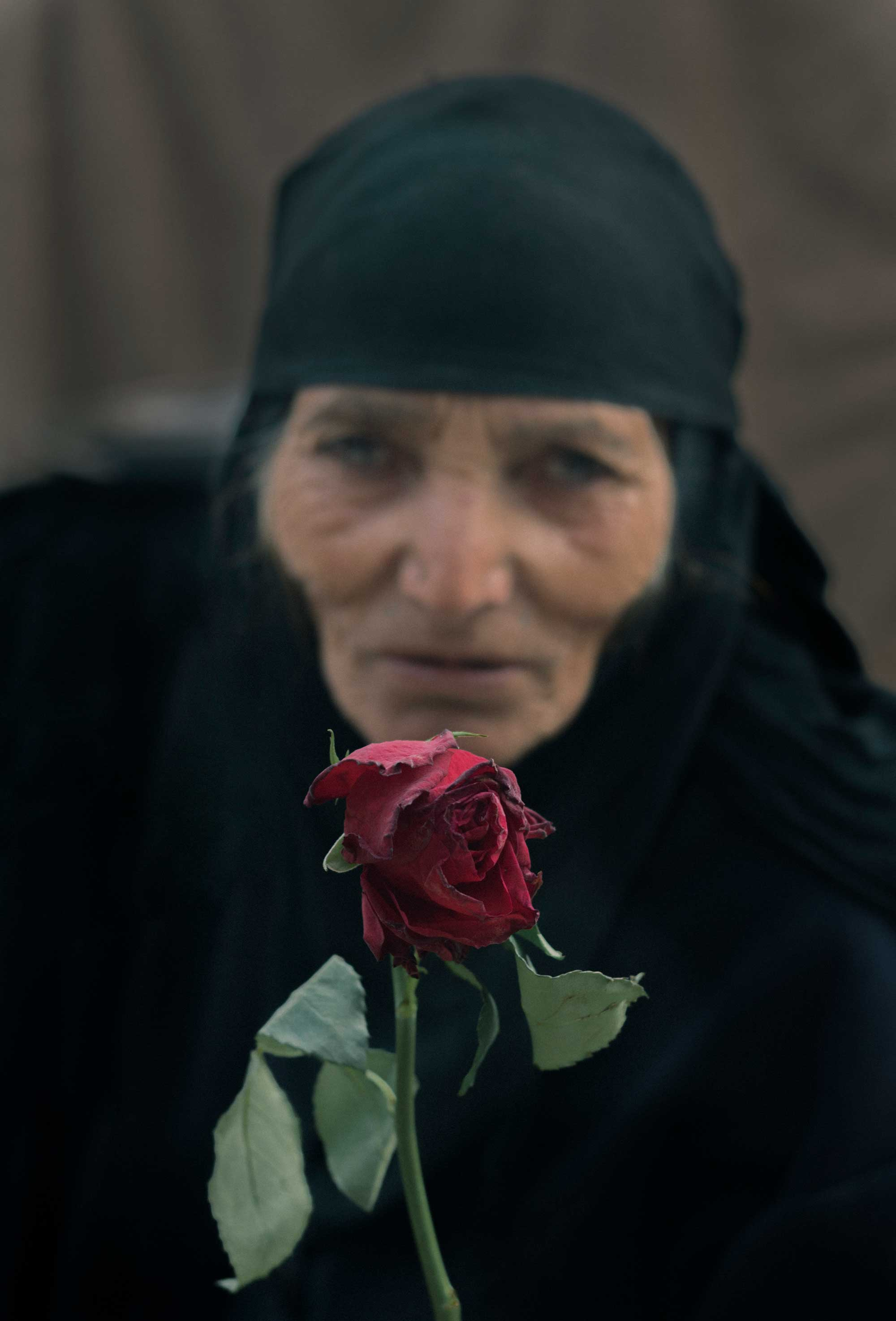 An older Iraqi woman stares into the camera with a red rose in her hand.