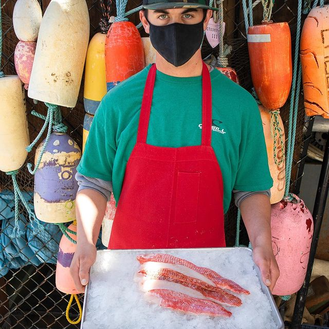 Crew Member holding rockfish fillets on tray