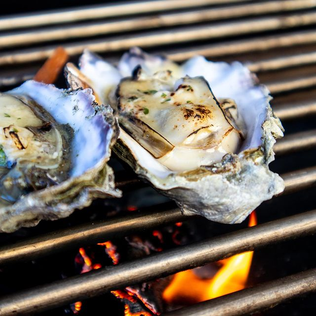 Grilling Oysters on Grill