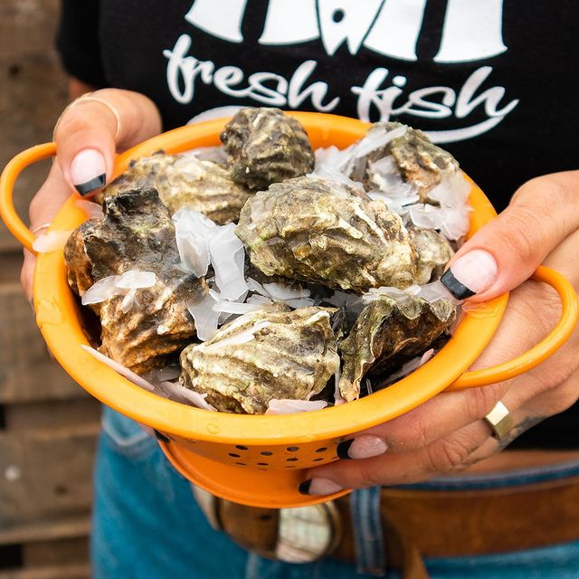 Crew member holding bowl of oysters