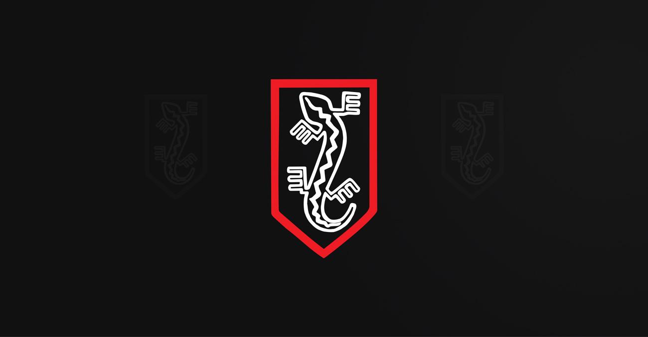 Symbol Związku Jaszczurczego wykorzystany w projekcie nadruku na odzież