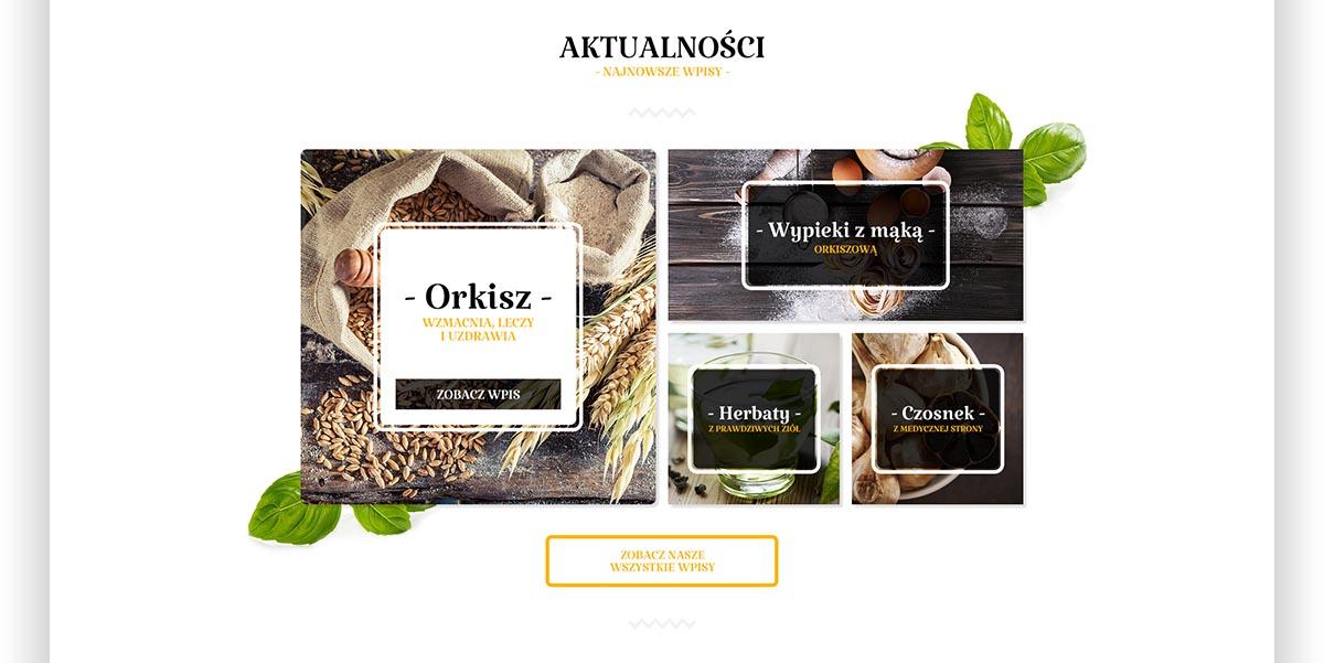Aktualności - Orkisz, Wypieki z mąką, Herbaty, Czosnek - Projekt graficzny strony internetowej Świat Orkiszu