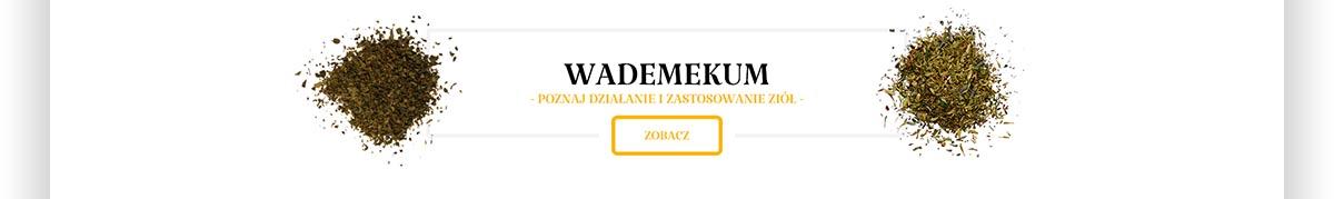 Wademekum poznaj działanie i zastosowanie ziół - Projekt graficzny strony internetowej Świat Orkiszu