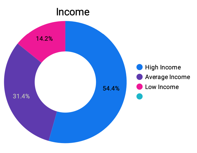 A graph image showing different rates of income levels that is meant to help you understand what type of data you can get from the Know Your Shopper platform.
