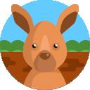 kangaroo GoalsWon