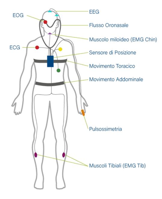 polisonnografia neurologica completa