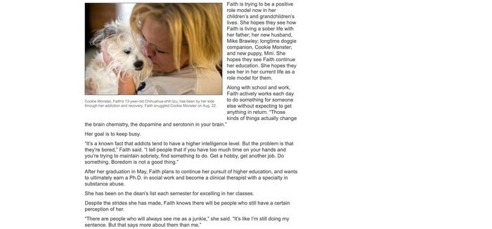 Screenshot of Herald website