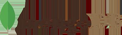 Partner - Mongodb Logo