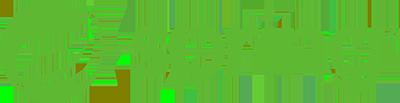 Partner - Spring Boot Logo