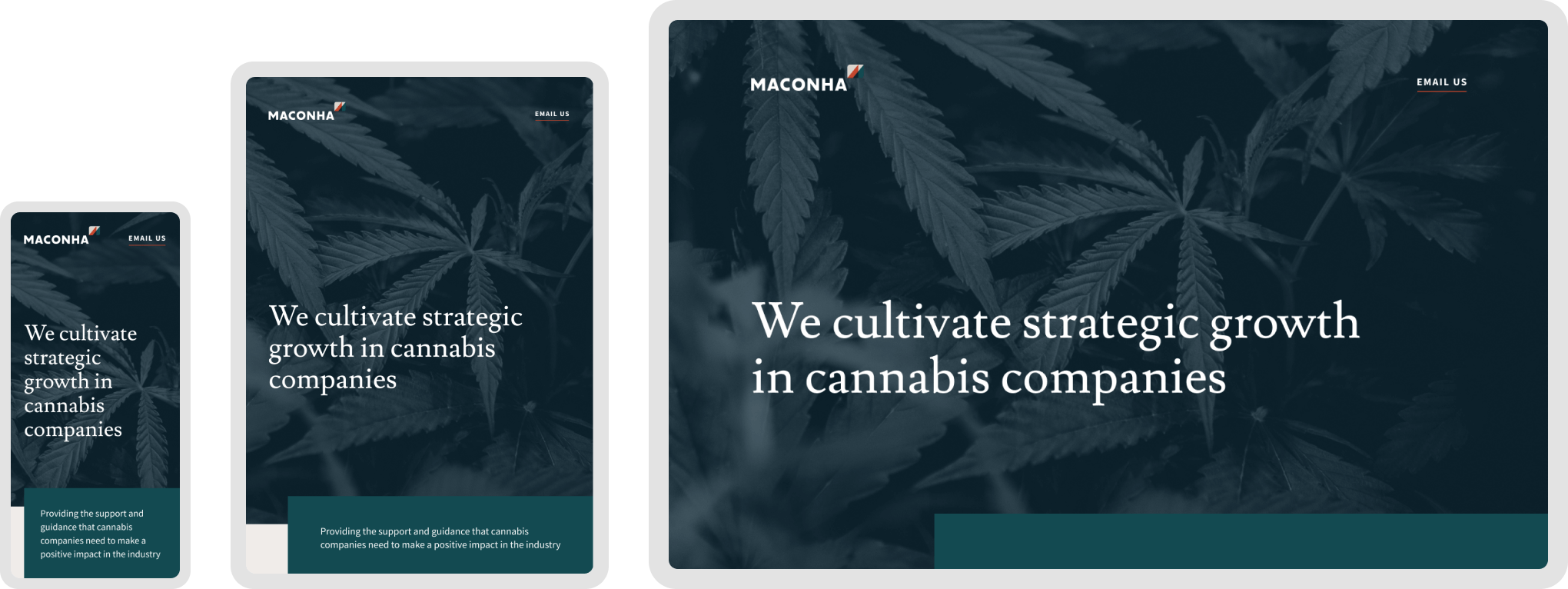The responsive design for Maconha's website shown across mobile, tablet, and desktop devices.