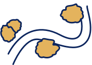 A winding path icon