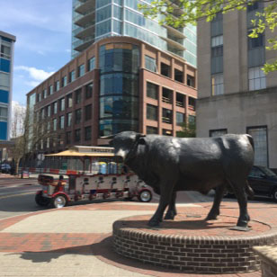 The durham bull statue in Downtown Durham.