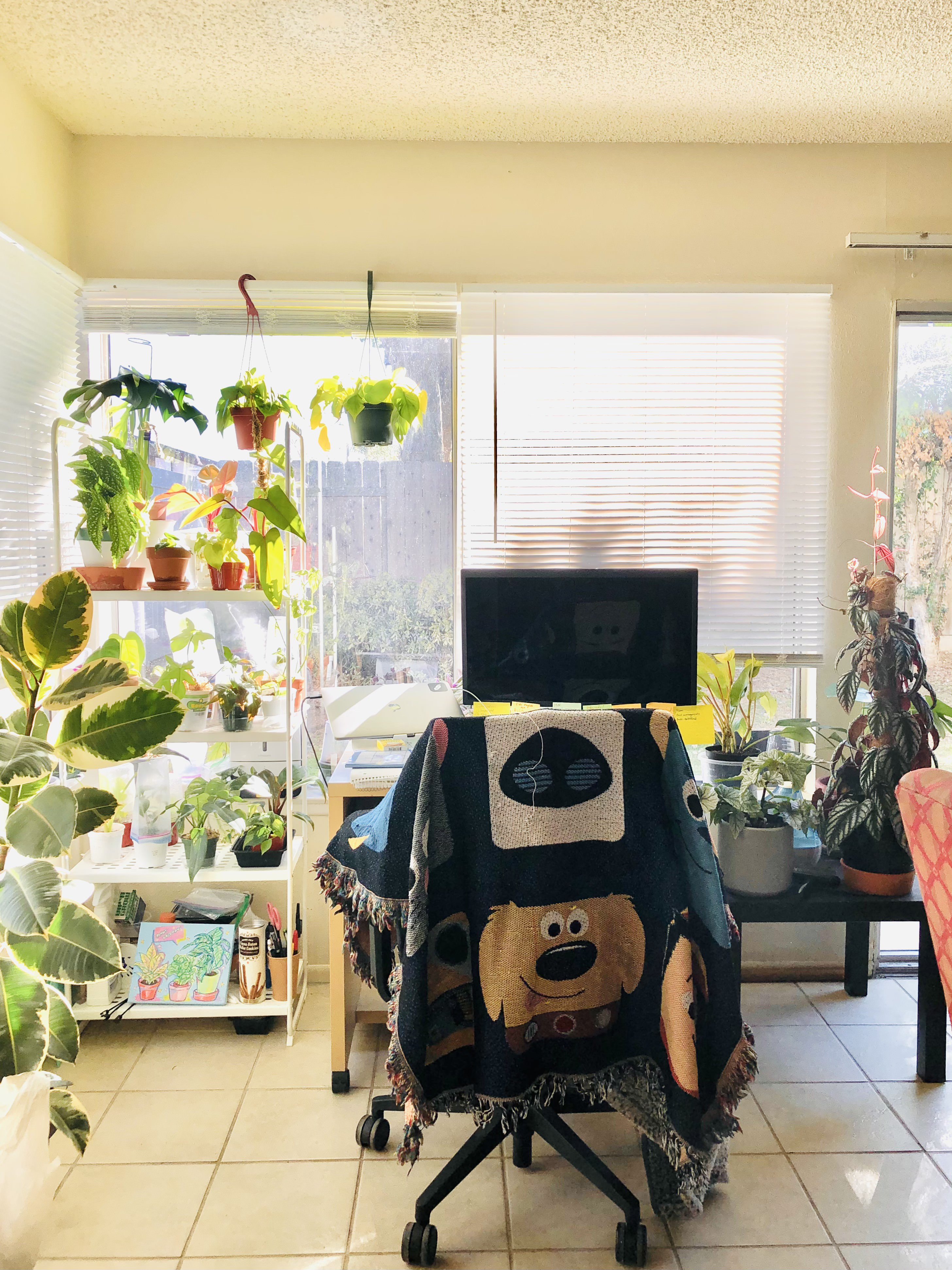 Desk with many plants