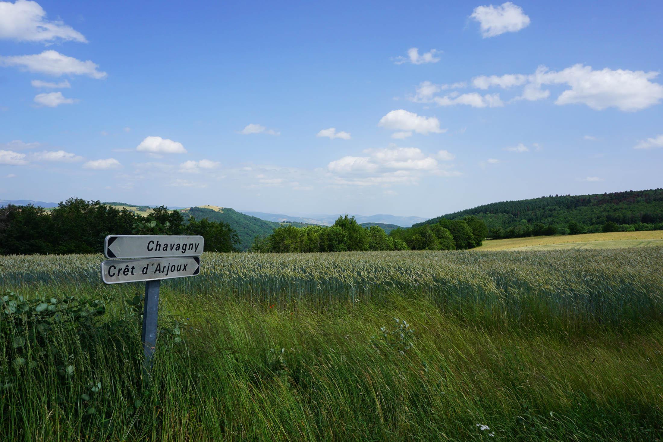 Paysage Mont d'Arjoux au Pays de l'Arbresle