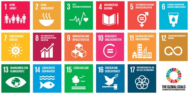 The Impact Company SDG Overview