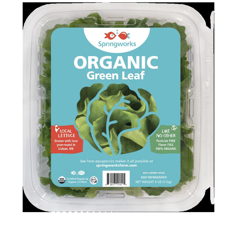 Organic Cut Green Leaf