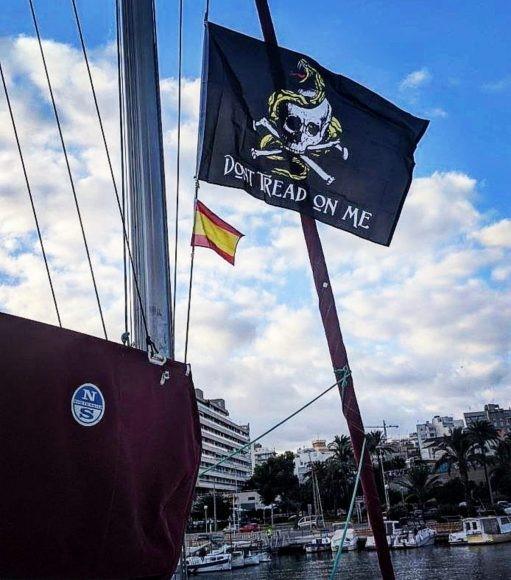 Gadsden e Jolly Roger juntas - o que o SY Staatenlos precisa