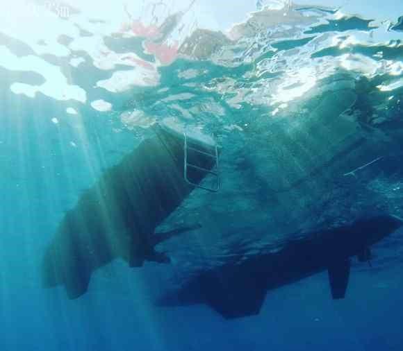 O SY Staatenlos de baixo - Imagem do nosso drone submarino FyFish