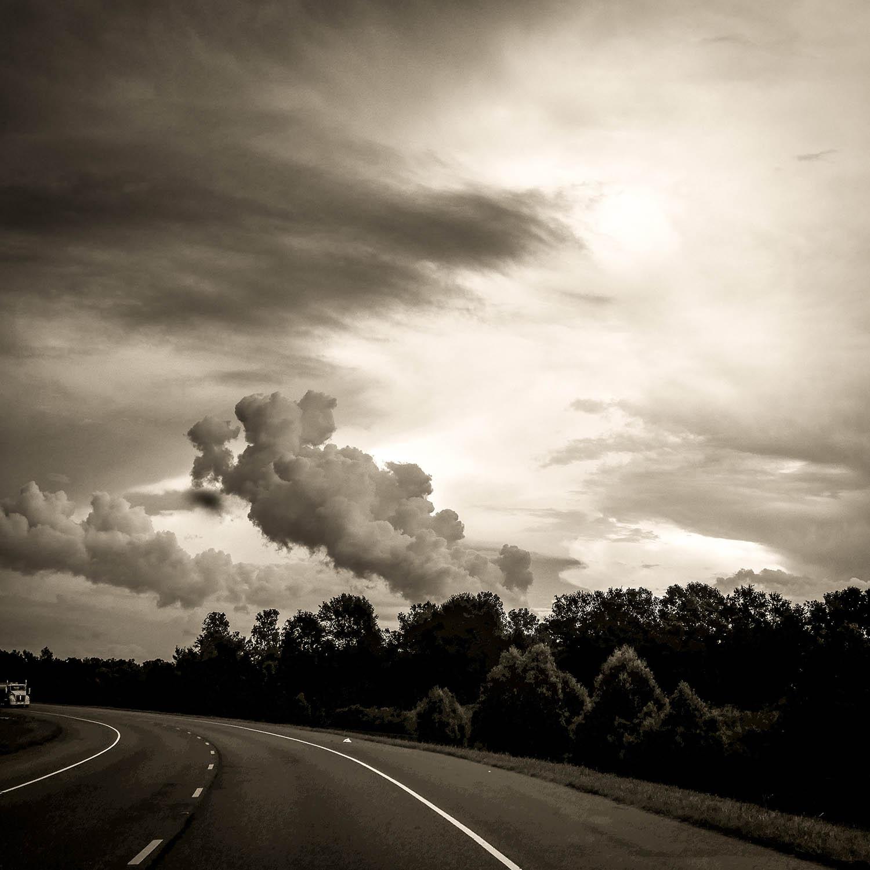 St. Bernard photographed by Will Crockett
