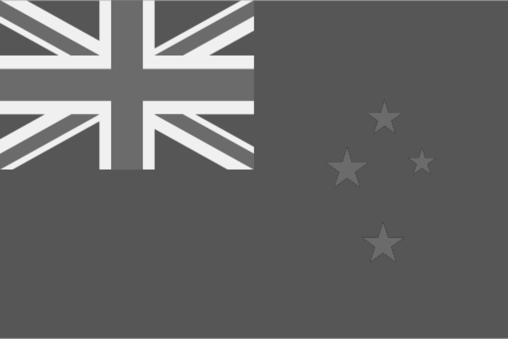 New Zealand kiwi travelers use visitor.us