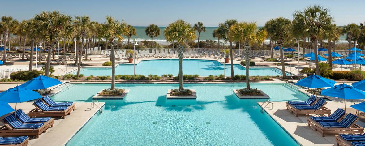 image of the hotel outdoor area. Palm trees, pools, and lounging chairs.