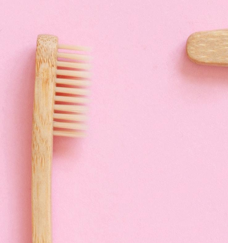 Z-MVZ dental suite - Richtige Zahnpflege