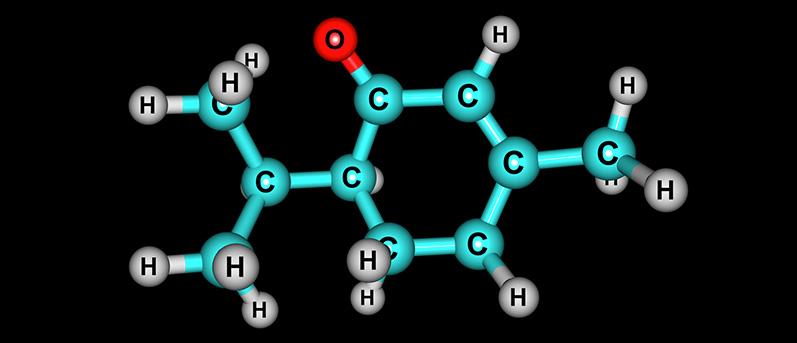 Ketone Supplement Fundamentals