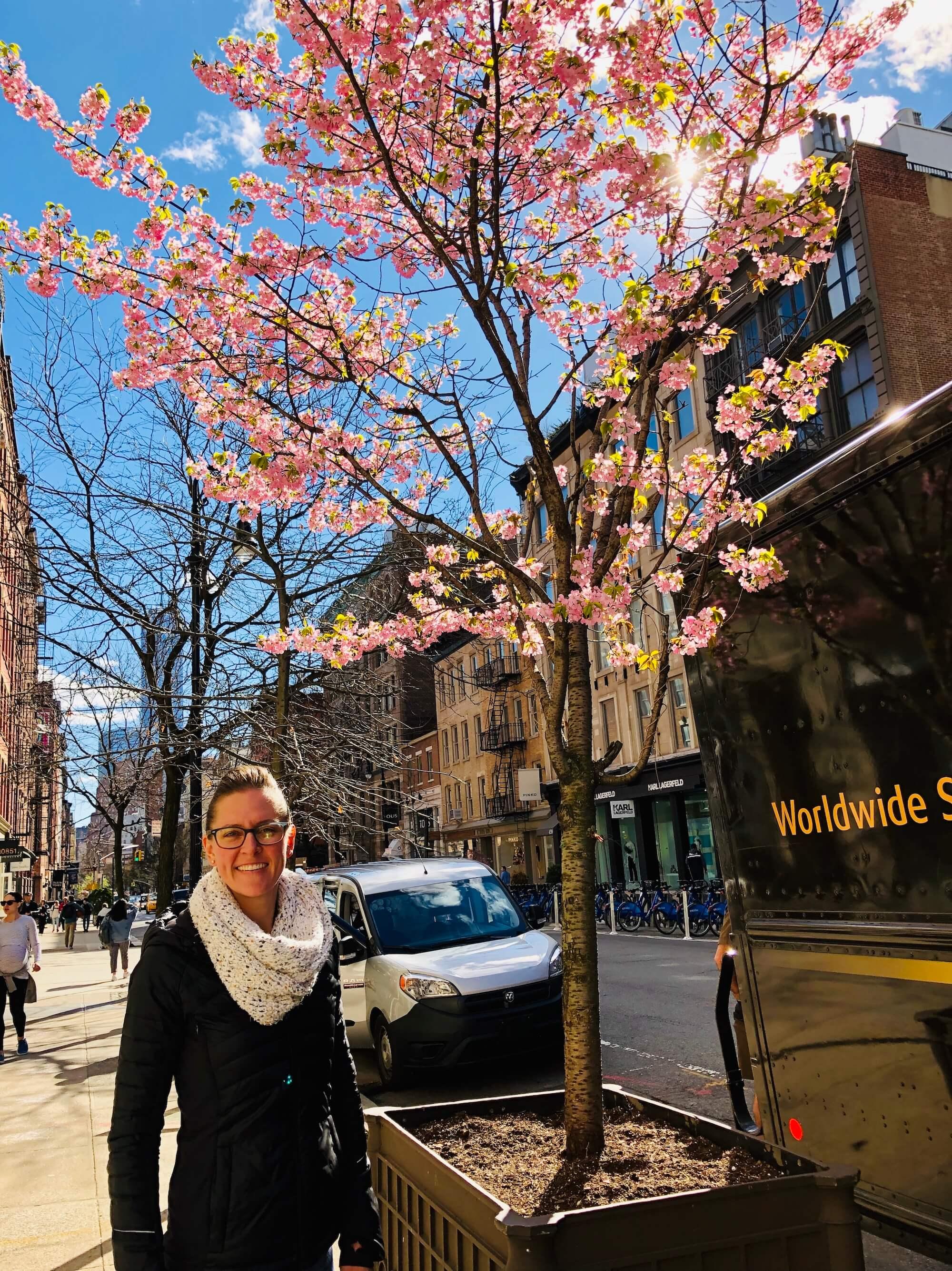 Megan-NYC-Japanese-Blossoms