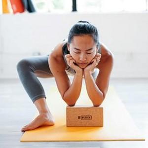 SwamiG Yoga Products
