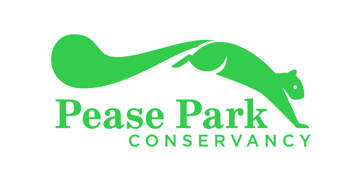A logo of a jumping squirrel for Pease Park Conservancy.