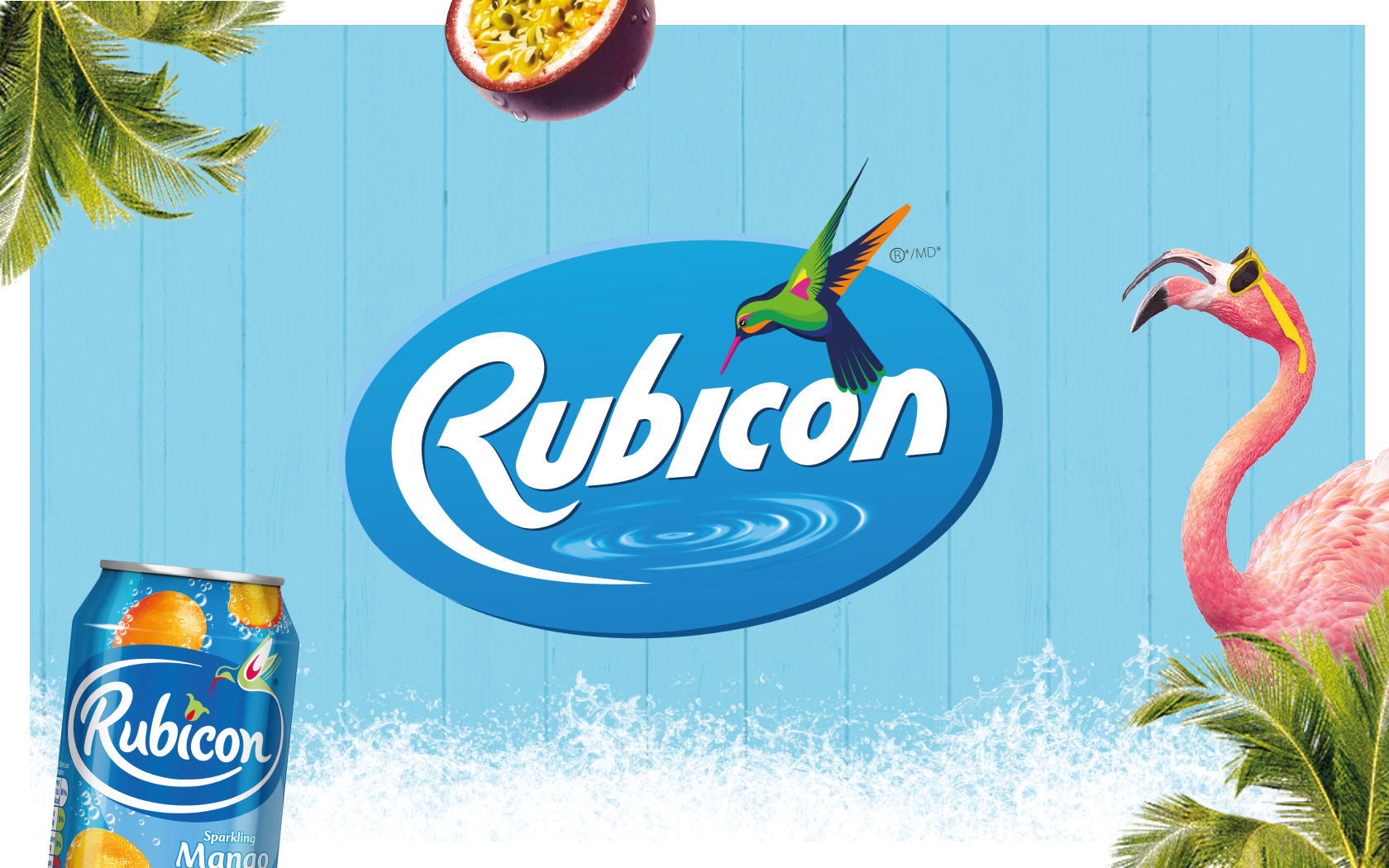Rubicon Pitch Deck