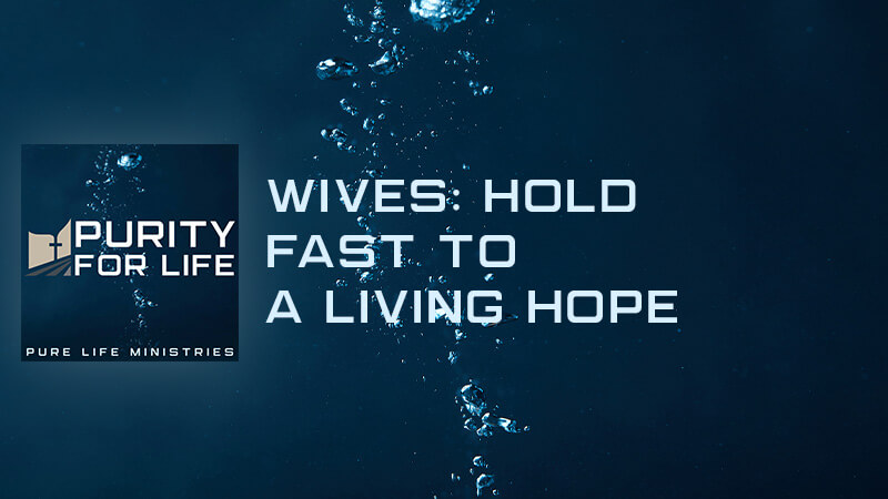 Purity for Life Episode #419: Wives: Hold Fast to a Living Hope