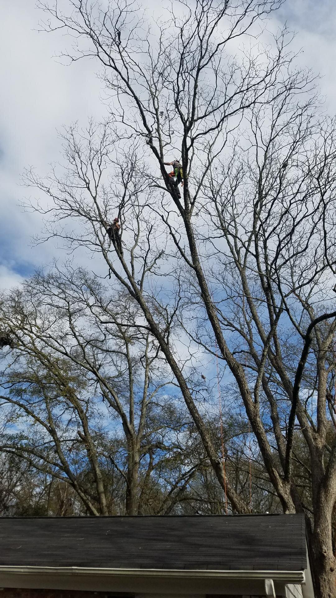 2 climbers.JPG