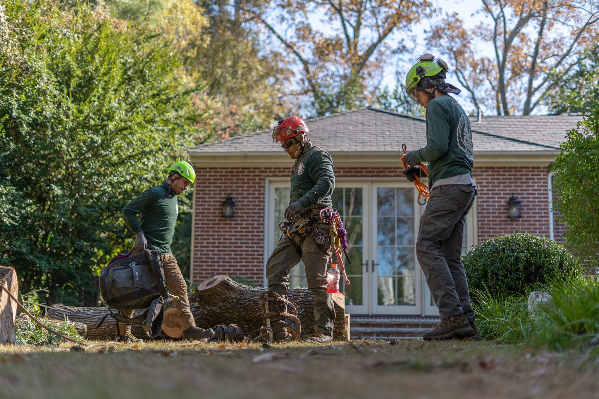 Gunnison Tree Services professionals clean up their work space after removing a storm-damaged tree