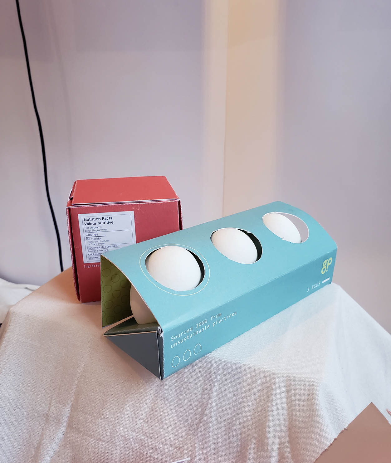 """A teal package holding eggs in a fancy but impractical way. The box reads """"Sourced 100% from unsustainable practices."""""""
