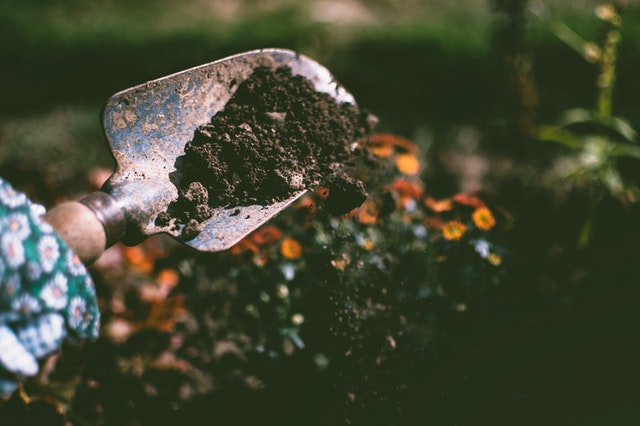 Shovel of soil