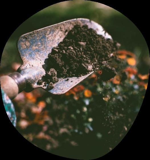 Shovel of dirt