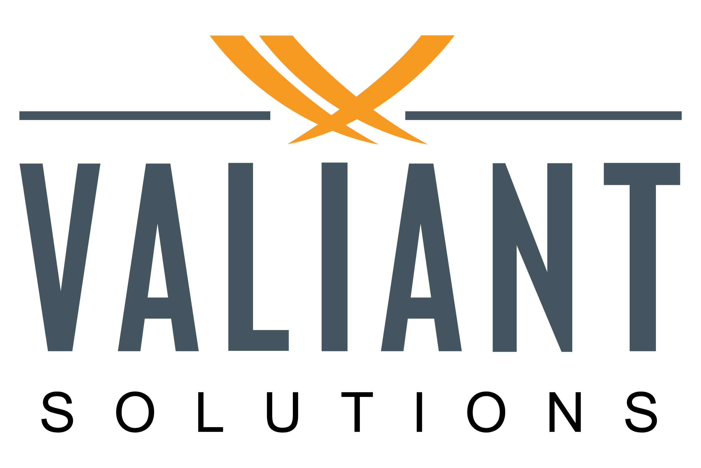 Valiant Solutions LLC's  logo