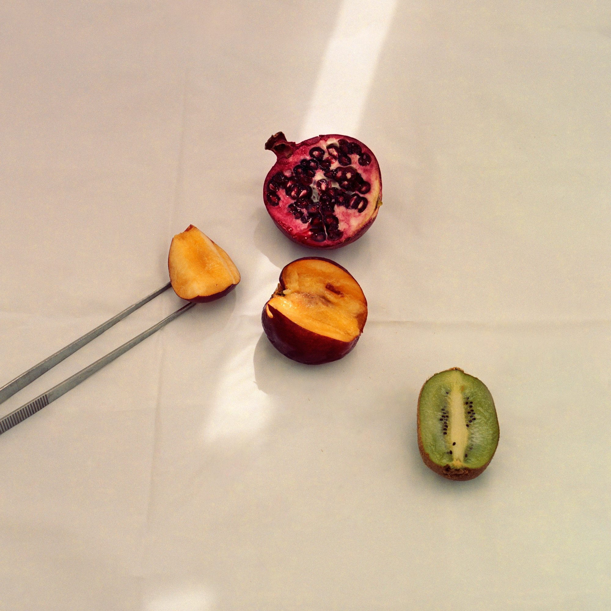 Fruit Dissection, Observation on film, by ioannis Koussertari.