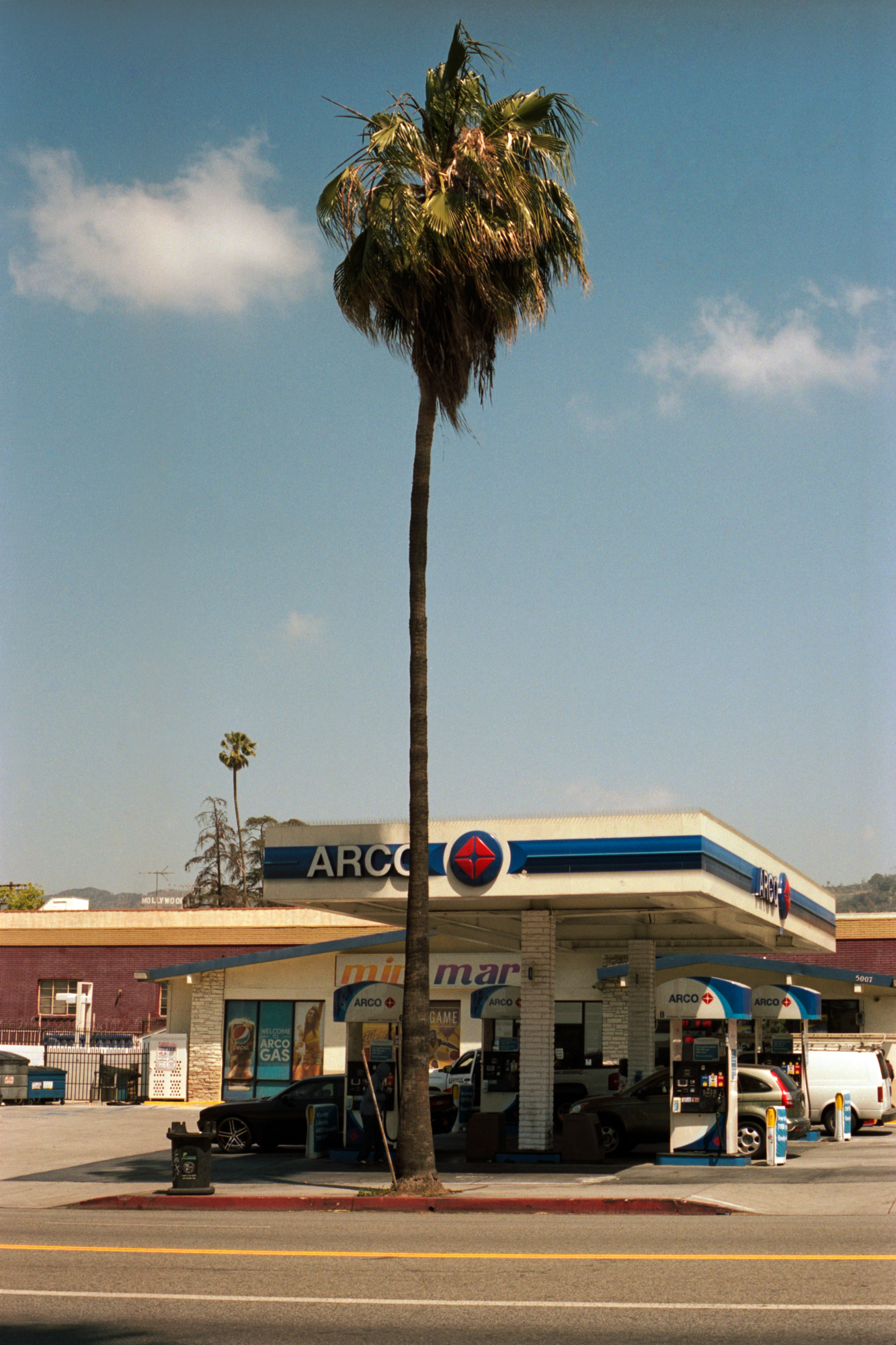 Arco on Sunset Blvd, Omg Your English, Photography by Ioannis Koussertari