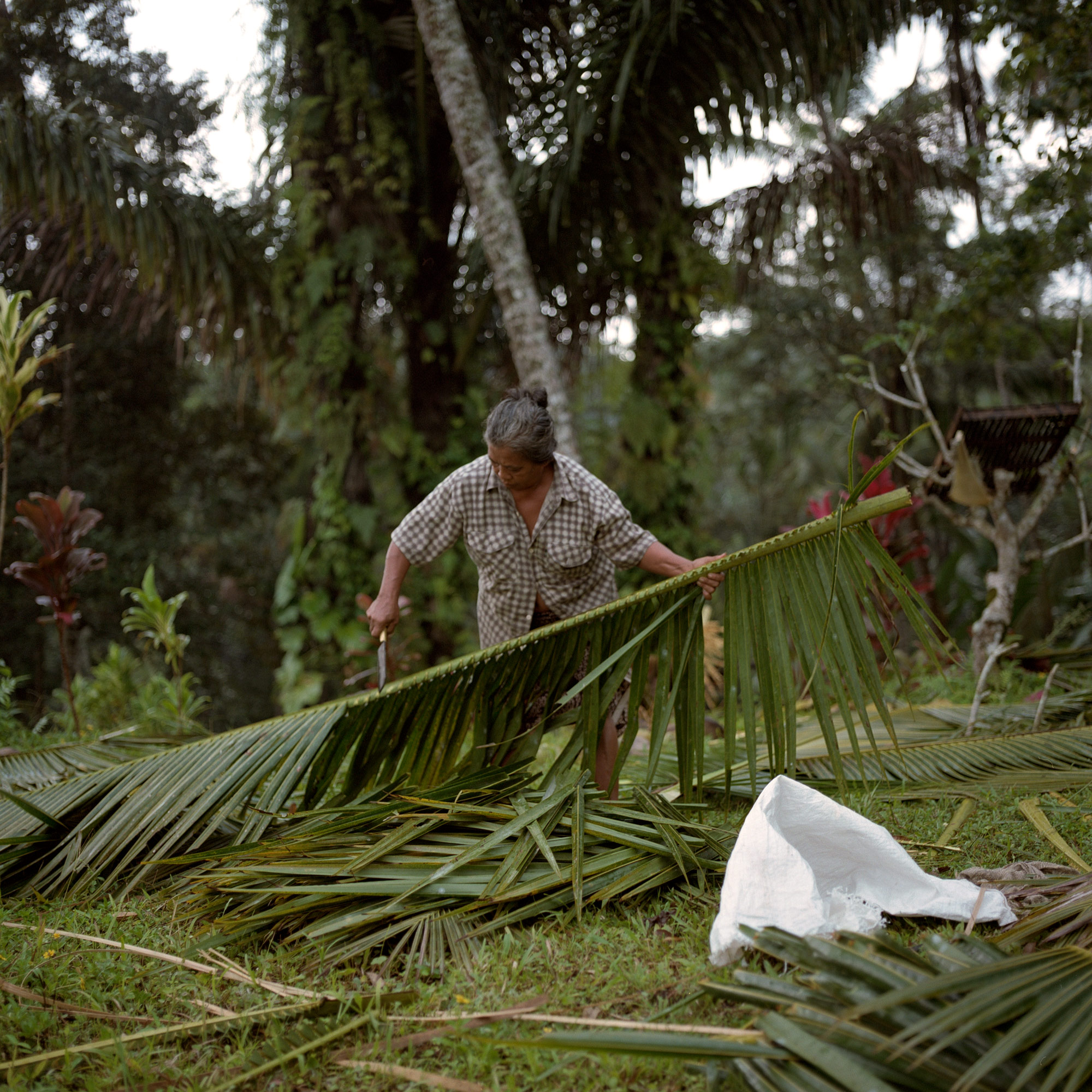 Ubud Woman Cutting Coconut Leaves, In Kedisah Ubud Bali, Eastern Travels, Photography By Ioannis Koussertari