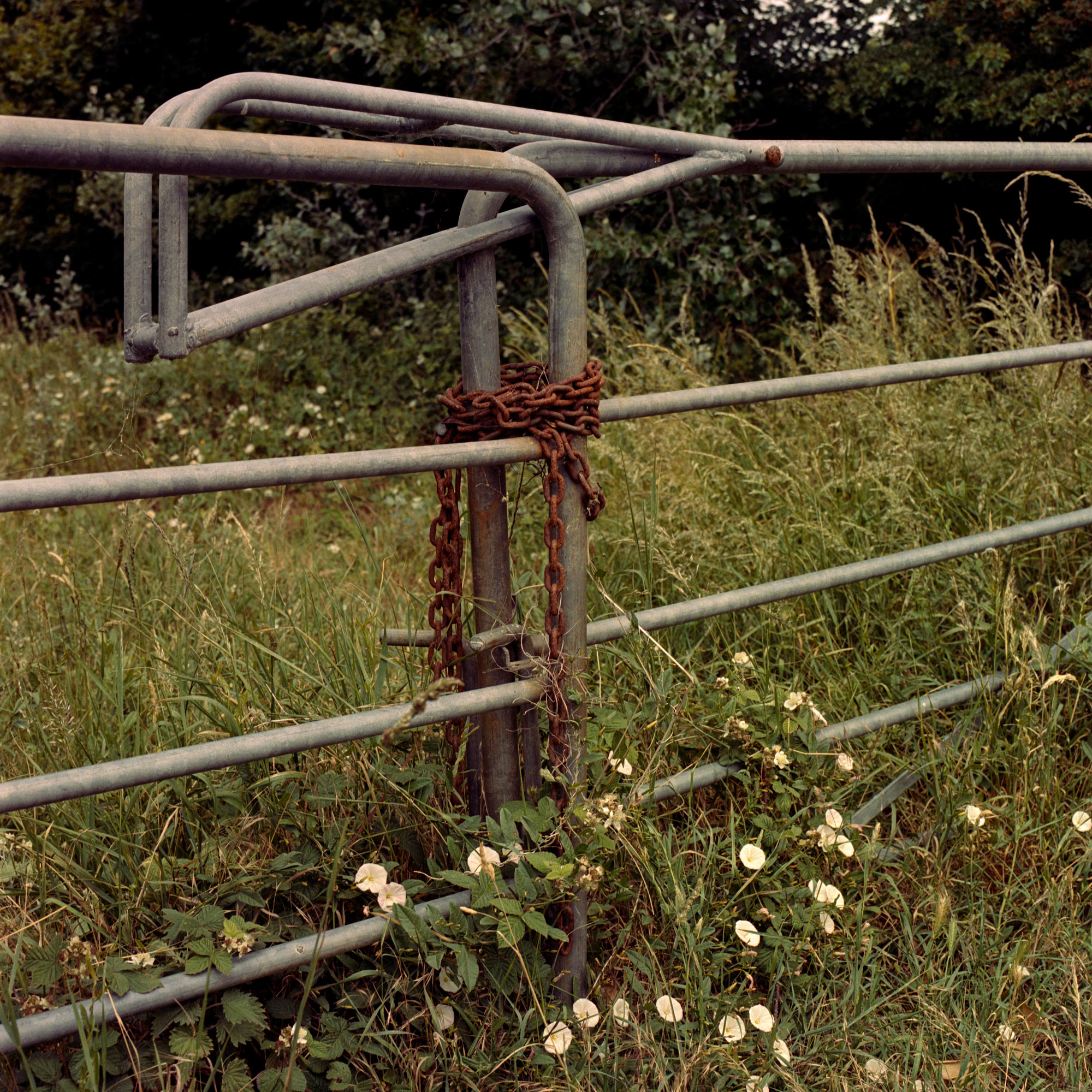 Chained Gate, landscape observation on film by ioannis Koussertari.